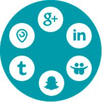 O meu segmento precisa de Redes Sociais?